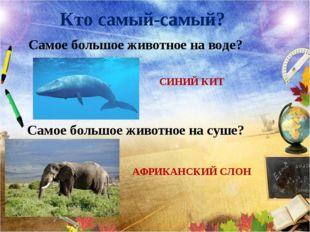 Кто самый-самый? Самое большое животное на воде? СИНИЙ КИТ Самое большое живо