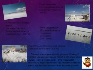 Озеро Развал в Оренбургской области (соленость составляет - 300%). В «мертво