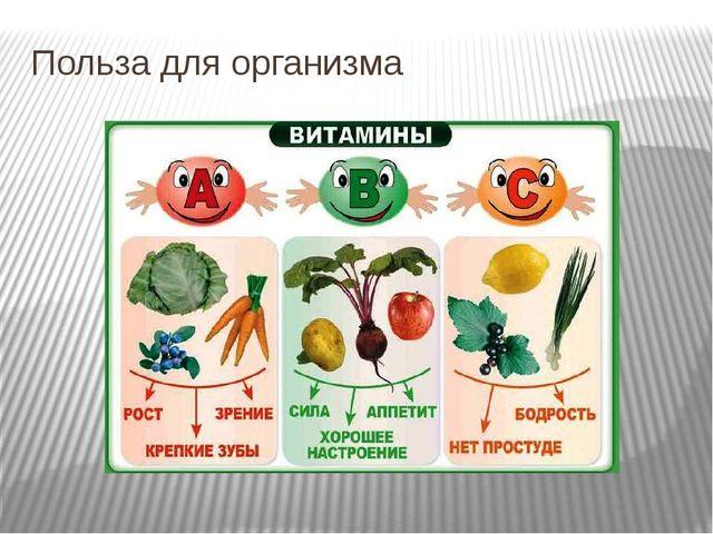 Польза для организма