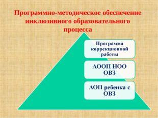 Программно-методическое обеспечение инклюзивного образовательного процесса