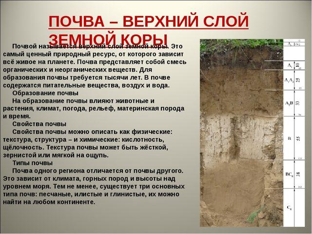ПОЧВА – ВЕРХНИЙ СЛОЙ ЗЕМНОЙ КОРЫ Почвой называется верхний слой земной кор...