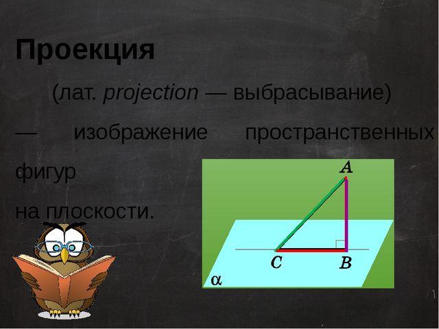 Проекция (лат. projection— выбрасывание) — изображение пространственных фиг...