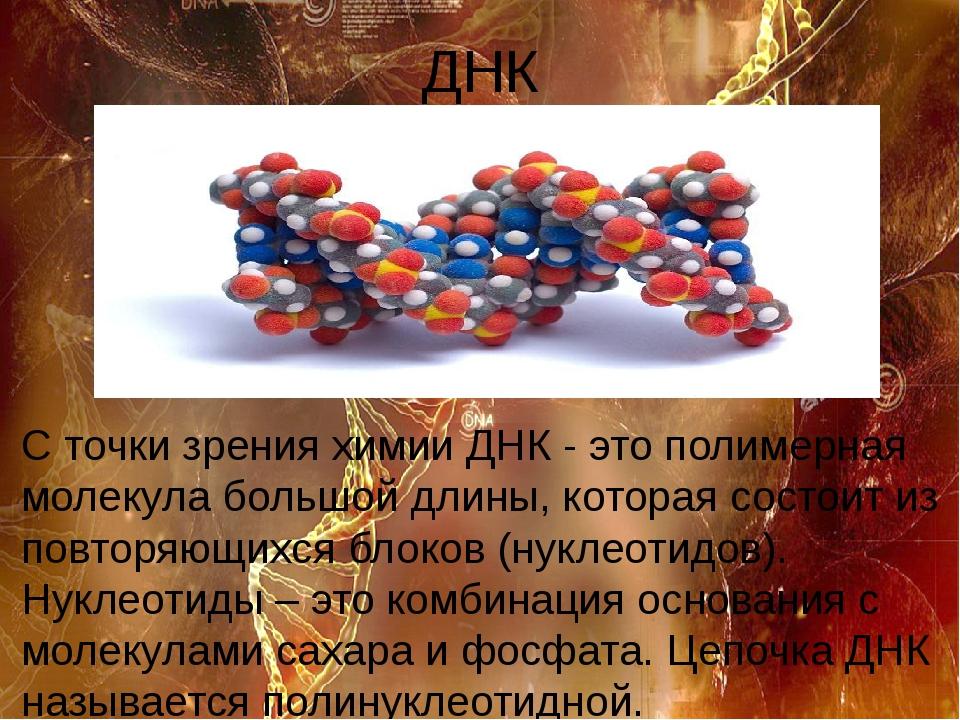 ДНК С точки зрения химии ДНК - это полимерная молекула большой длины, которая...