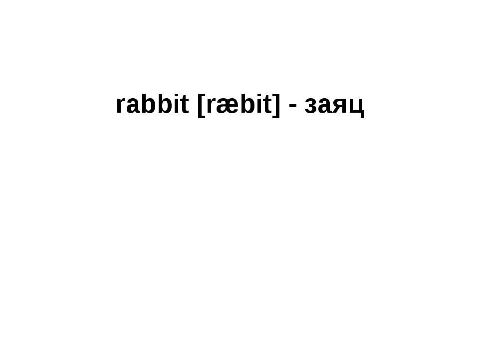 rabbit [ræbit] - заяц