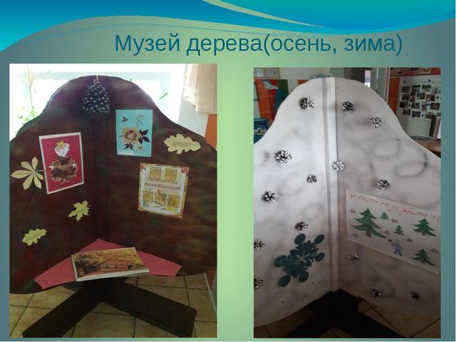 Музей дерева(осень, зима)
