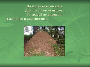 На полянке возле ёлок Дом построен из иголок. За травой не виден он, А жильцо
