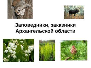 Заповедники, заказники Архангельской области