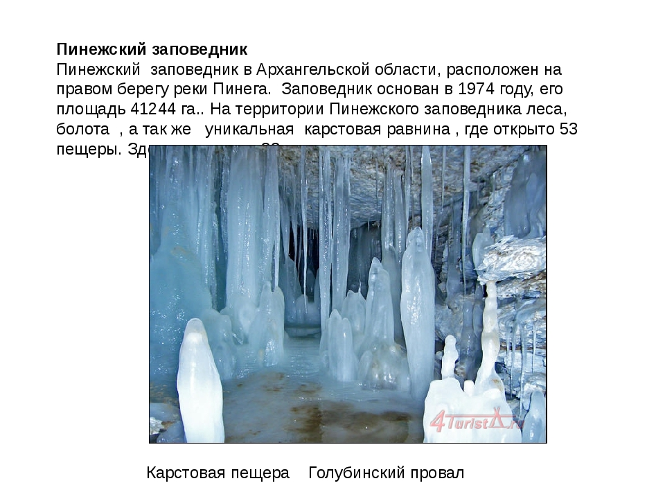 Пинежский заповедник Пинежский заповедник в Архангельской области, расположен...