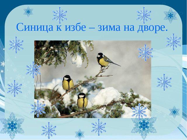 Синица к избе – зима на дворе.