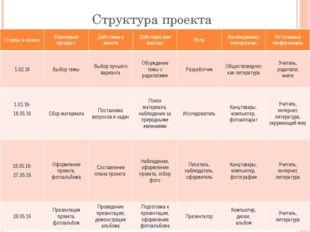 Структура проекта Этапы и сроки Конечный продукт Действия в школе Действия вн