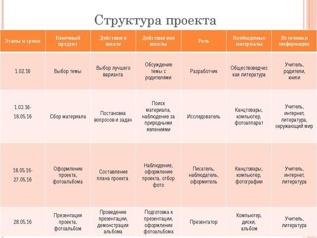 Структура проекта Этапы и сроки Конечный продукт Действия в школе Действия вн...