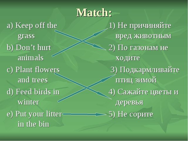 Match: a) Keep off the grass b) Don't hurt animals c) Plant flowers and trees...