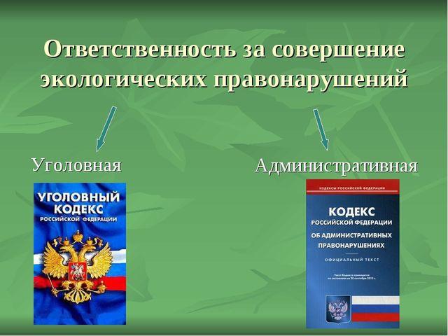 Ответственность за совершение экологических правонарушений Уголовная Админист...