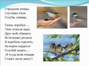 Городские птицы- Спутники твои: Голуби, синицы, Галки, воробьи…. Этих птиц не