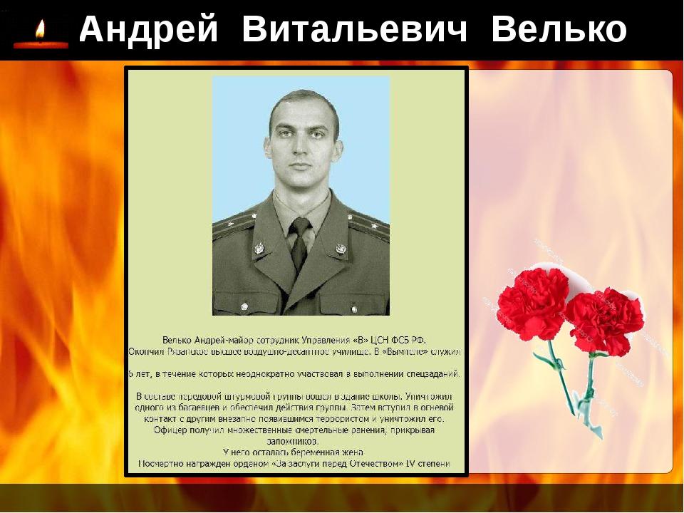 Андрей Витальевич Велько