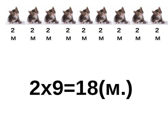 2м 2м 2м 2м 2м 2м 2м 2м 2м 2x9=18(м.)