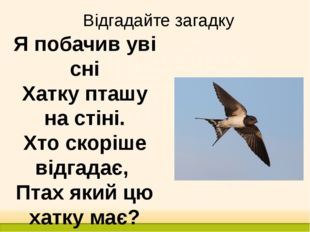 Відгадайте загадку Я побачив уві сні Хатку пташу на стіні. Хто скоріше відгад