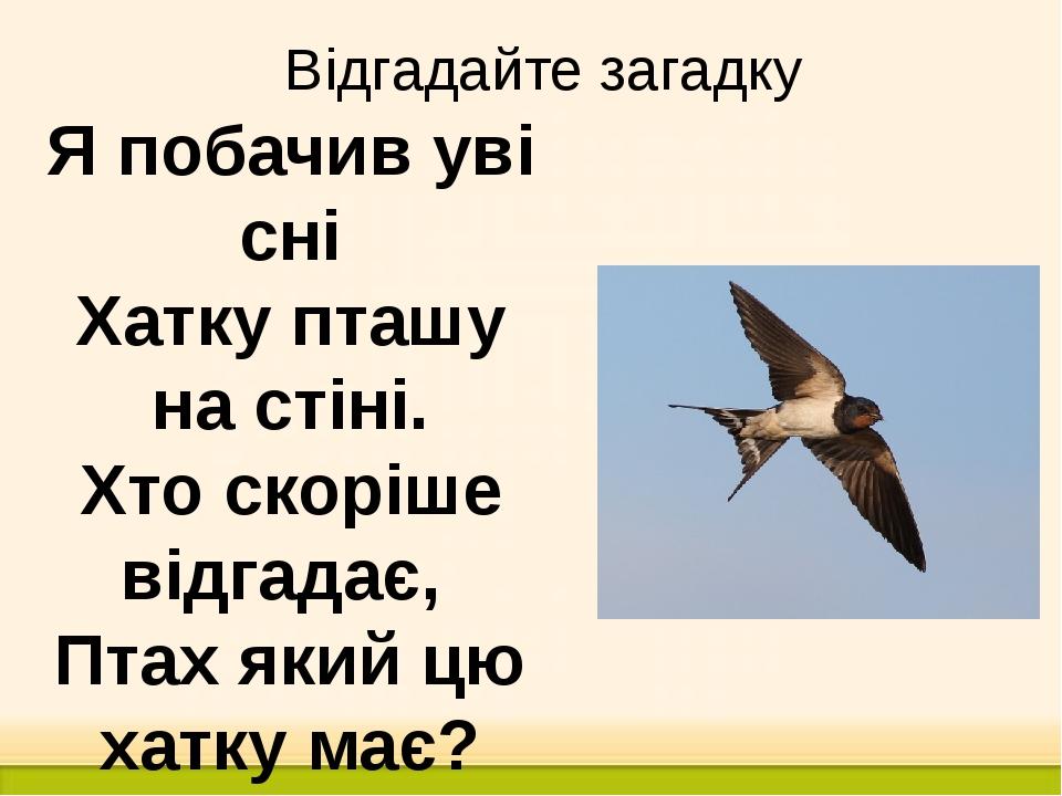 Відгадайте загадку Я побачив уві сні Хатку пташу на стіні. Хто скоріше відгад...