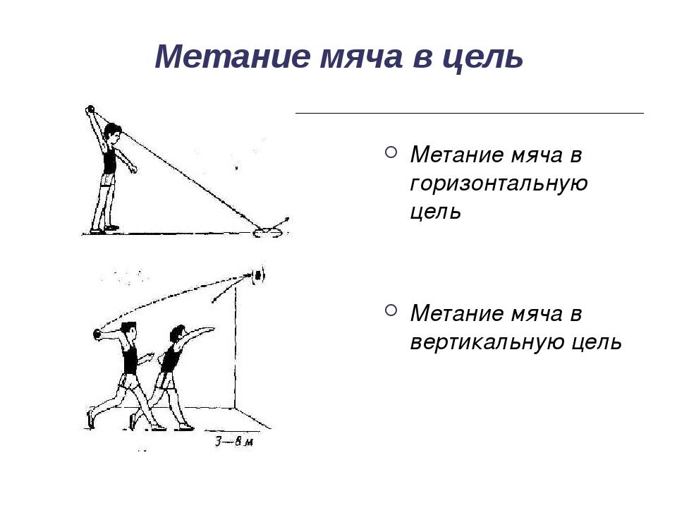 Метание мяча в цель Метание мяча в горизонтальную цель Метание мяча в вертика...