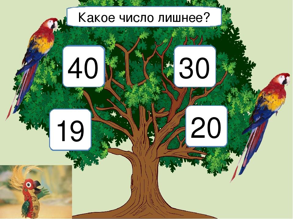 2 4 8 20 Какое число лишнее? 19 20 40 30