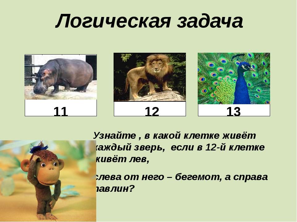 Логическая задача Узнайте , в какой клетке живёт каждый зверь, если в 12-й кл...