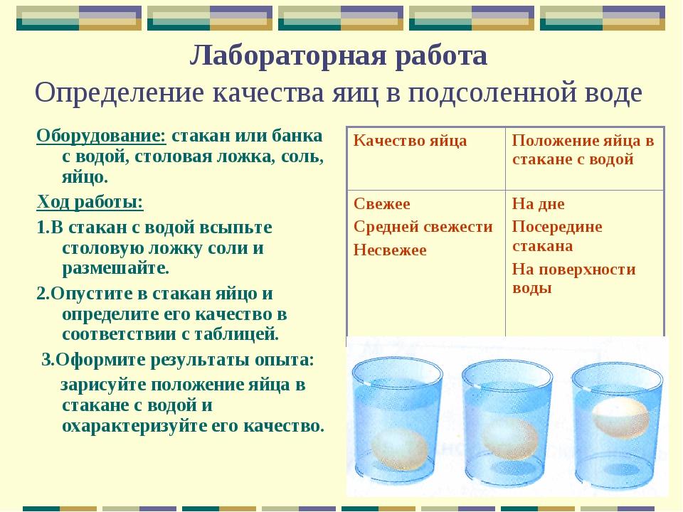 Лабораторная работа Определение качества яиц в подсоленной воде Оборудование:...