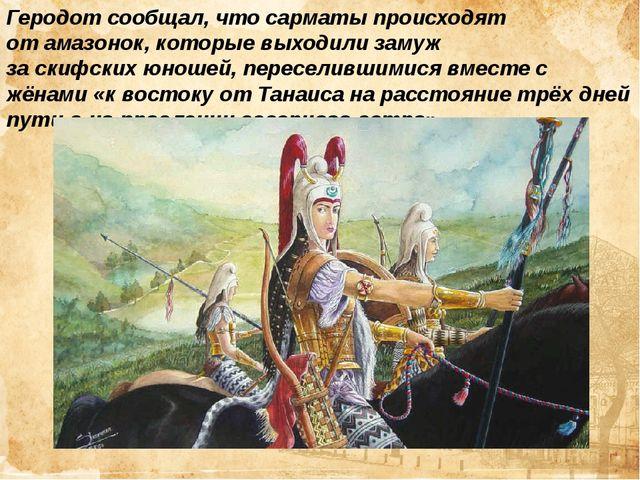 Геродотсообщал, что сарматы происходят отамазонок, которые выходили замуж з...