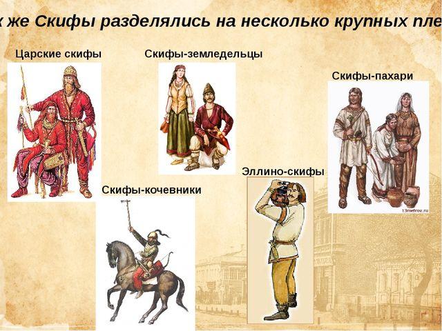 Так же Скифы разделялись на несколько крупных племён Царские скифы Скифы-коче...