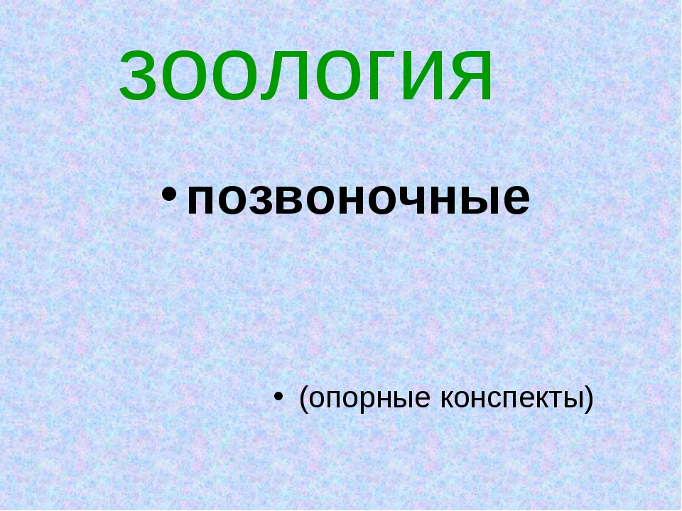 зоология позвоночные (опорные конспекты)