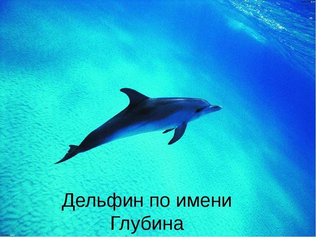 Дельфин по имени Глубина