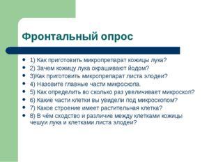 Фронтальный опрос 1) Как приготовить микропрепарат кожицы лука? 2) Зачем кожи