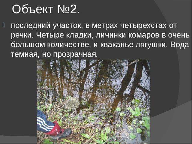 Объект №2. последний участок, в метрах четырехстах от речки. Четыре кладки, л...