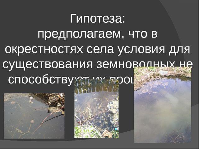 Гипотеза: предполагаем, что в окрестностях села условия для существования зе...