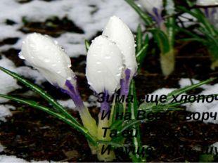 Зима еще хлопочет И на Весну ворчит: Та ей в глаза хохочет И пуще лишь шум