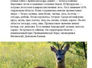 Флора и фауна Расположена в зонах средней и южной тайги, а также смешанных ле
