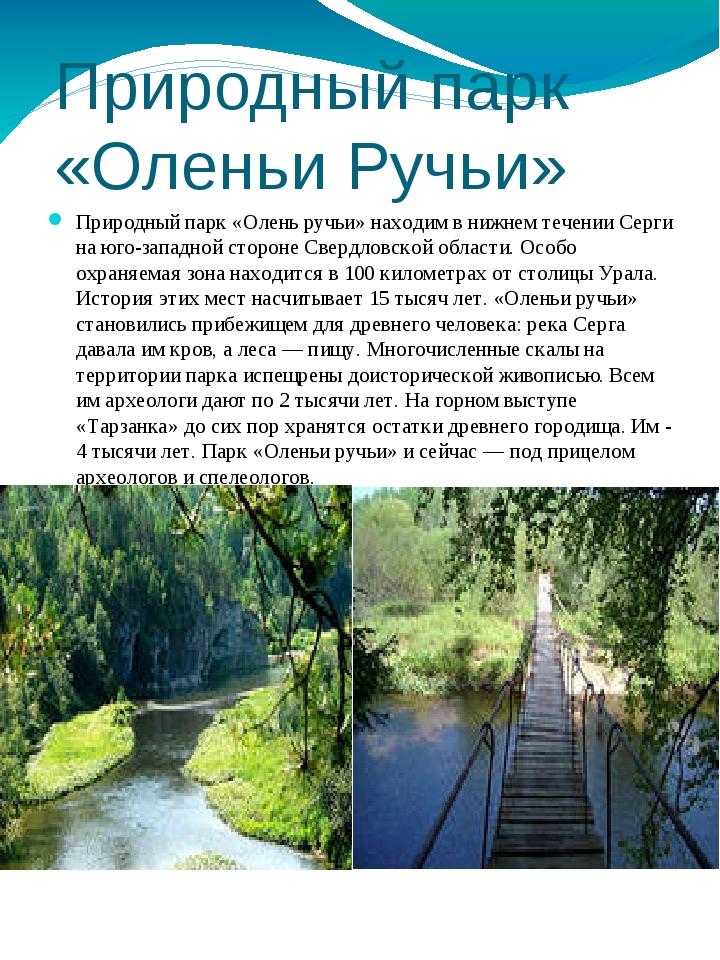 Природный парк «Оленьи Ручьи» Природный парк «Олень ручьи» находим в нижнем т...