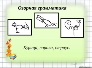 Курица, сорока, страус. Озорная грамматика