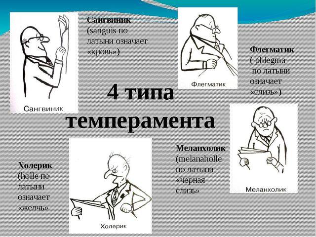 4 типа темперамента Сангвиник (sanguis по латыни означает «кровь») Флегматик...
