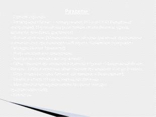 Разделы: - Главная страница - Регистрация (Бизнес – планирование; ИП или ООО