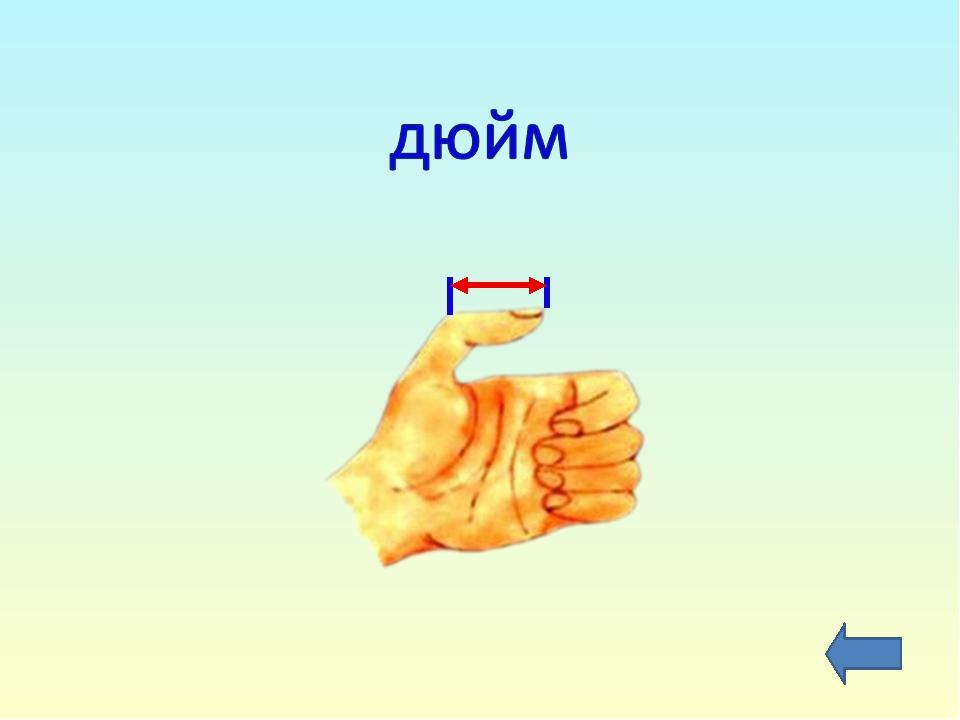 Величина – длина Единицы измерения: миллиметр сантиметр метр километр