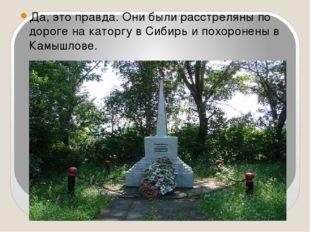 Да, это правда. Они были расстреляны по дороге на каторгу в Сибирь и похороне