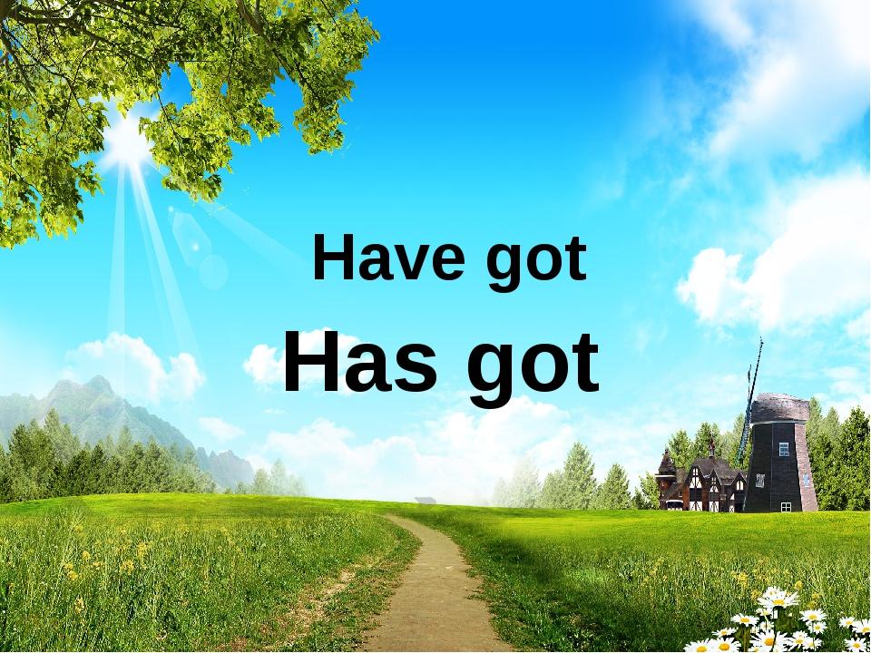 Has got Have got