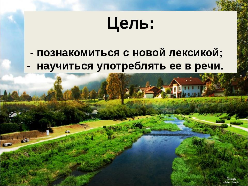Цель: - познакомиться с новой лексикой; - научиться употреблять ее в речи.