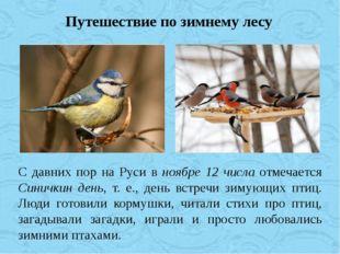 Путешествие по зимнему лесу С давних пор на Руси в ноябре 12 числа отмечается