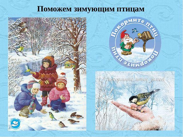 Поможем зимующим птицам