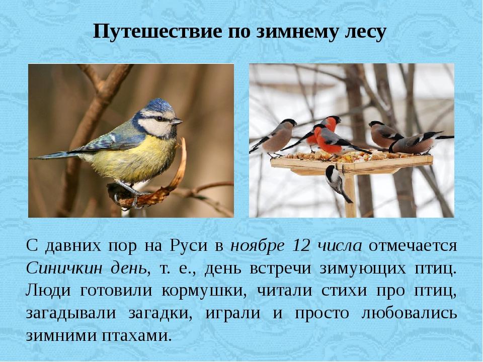 Путешествие по зимнему лесу С давних пор на Руси в ноябре 12 числа отмечается...