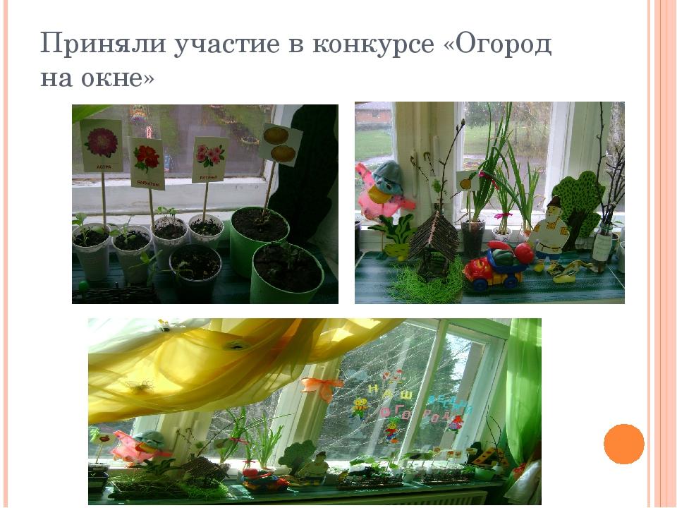 Приняли участие в конкурсе «Огород на окне»