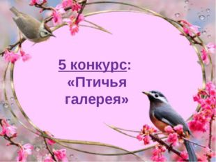 5 конкурс: «Птичья галерея»