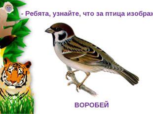 - Ребята, узнайте, что за птица изображена. ВОРОБЕЙ