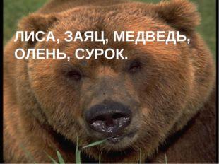 ЛИСА, ЗАЯЦ, МЕДВЕДЬ, ОЛЕНЬ, СУРОК.